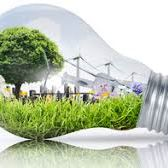 Ecological light bulb